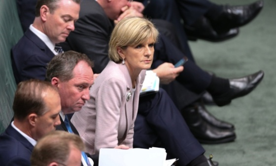 Julie Bishop Mike Bowers for the Guardian